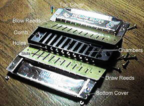 The Diatonic Harp Reference: How a Harmonica Works 1